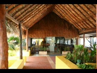 كوزميل, المكسيك: Melia Cozumel