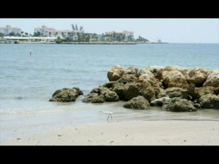 Riviera Beach, ฟลอริด้า: Marriott Ocean Pointe