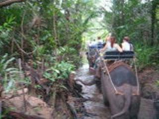 Краби, Таиланд: Elephant ride
