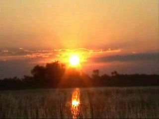 Video Tour of the Okavango Delta