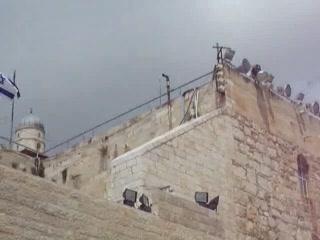 Jerusalén, Israel: Muro de los lamentos