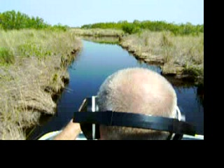 Everglades City, Floride : Airboat ride at Speedy Johnsons in Everglade City Florida
