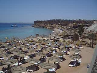 Reef Oasis Beach Resort : Reef Oasis restaurant view over the sea