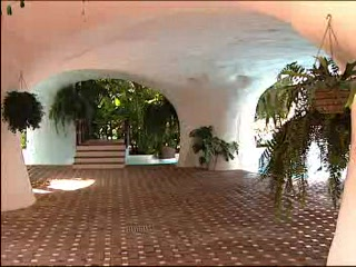 Cafards salle de bain photo de hotel jardin tropical for Le jardin tropical tenerife