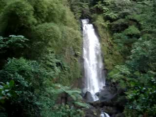 Roseau, Dominica: The waterfall