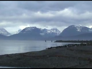 Homer, AK : Take Me Back To Kachemak Part 2