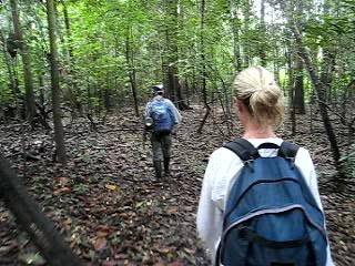 Muyuna Amazon Lodge: Exploring through the Jungle with Moises