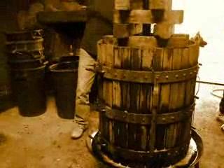 Витербо, Италия: Wine Harvest 2007 - Soriano nel CImino