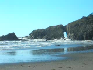 Parque Nacional Olympic, WA: Watchin' the Surf (Second Beach)