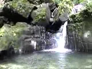 El Yunque Rainforest Waterfalls in Puerto Rico