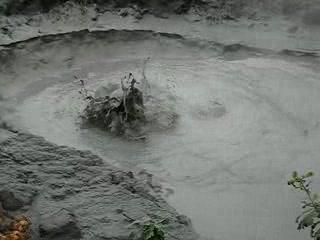 Wai-O-Tapu Thermal Wonderland : Bubbling mud