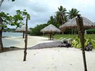 Cocomo Resort: Lagoon beach resort Beach