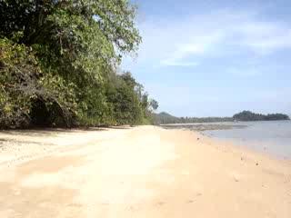 Koyao Bay Pavilions: The Beach at  Koyao Bay Pavillions