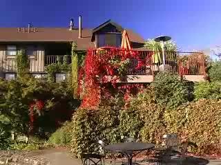 واين كانتري إن: Wine Country Inn Introduction