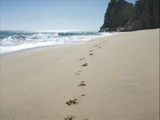 San Jose Del Cabo, Mexique : CSL, SJD & TS '06/'07