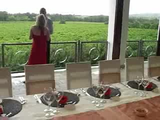 Vrede en Lust Winery: Vrede en Lust Wine Estate - with view from the terrace