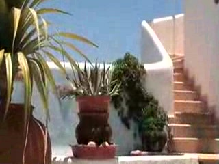 Casa Contenta Bed & Breakfast: Casa Contenta - Cabo San Lucas
