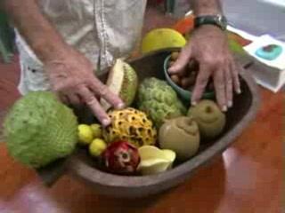 Cape Trib Exotic Fruit Farm: Exotic Fruit Tasting