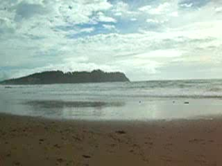 Hot water beach in rotorua