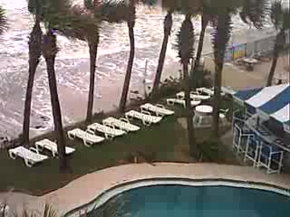 Flamingo Inn Daytona Beach Spring Break