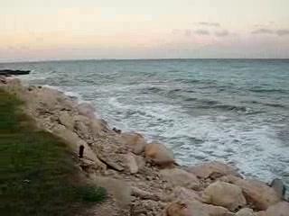 Hyatt Ziva Cancun : View of Ocean at Dreams Cancun