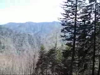 Take a Six Minute Hike up Mount LeConte