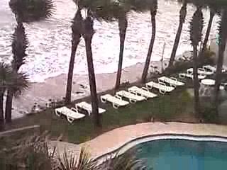 Flamingo Inn: The Storm
