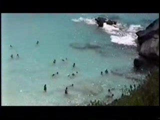 Приход Саутгемптон, Бермуды: Bermuda Horseshoe Bay