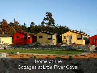 ‪‪Little River‬, كاليفورنيا: Explore the New Cottages at Little River Cove‬