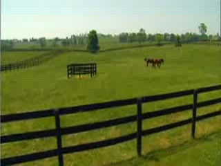 Kentucky : Lexington and the Bluegrass Region