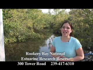 Naples, FL: Rookery Bay