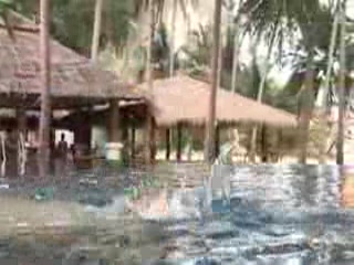 Ко-Йао-Ной, Таиланд: kuoni.co.uk video presenting Paradise Koh Yao, Thailand