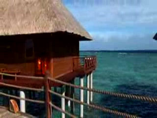 Dhaalu Atoll: kuoni.co.uk presenting Vilu Reef Beach & Spa, Maldives