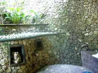 Bali Spirit Hotel and Spa: Bali Spirit Hotel in Ubud