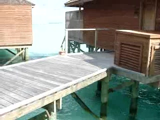 Meeru Island Resort & Spa : Fishies by the Jetty