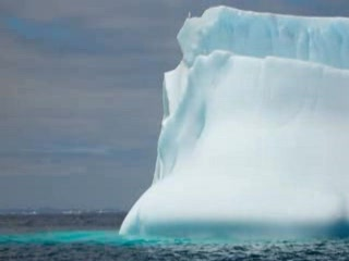 St. John, Canadá: CapeRace ICE :  Newfoundland iceberg and hiking tour