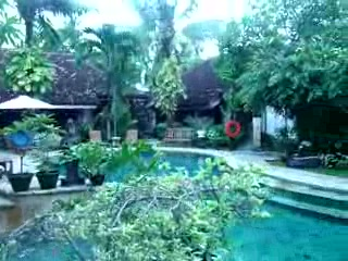 Tamukami Hotel: Pool area
