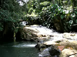 Rainforest Inn waterfall