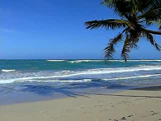 Beautiful sandy beaches at Punta Cana, Dominican Republic