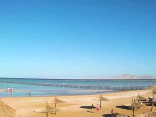 Coral Sea Holiday Village: View from beach upto zip wire