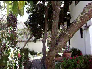 El Albergue Ollantaytambo: El Albergue