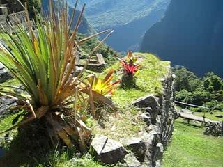 Куско, Перу: Just inside Machu Picchu