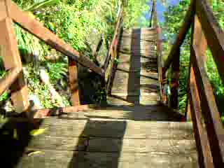 Anse Cochon, Saint Lucia: Down the steps in May 2009