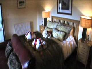 Rhandregynwen Hall Bed & Breakfast: Rhandregynwen Hall Bed and Breakfast