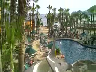 Whale slide at Villa Del Palmar