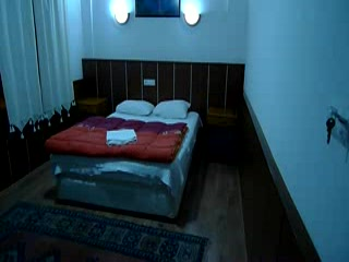 Sezgins Boutique Pansion: Room at sezgins
