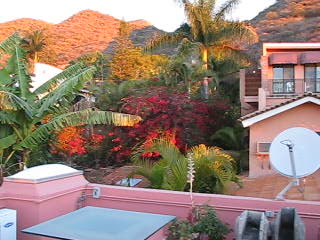 Casa Tres Leones: Early morning from the Mirador