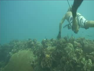 The Original Spearfishing Adventure on Cozumel