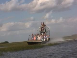 Everglades Adventure with Miami Tour Company