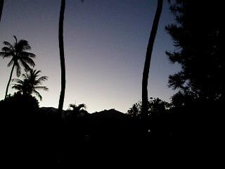 Haleakala Shores Condos: bird symphony